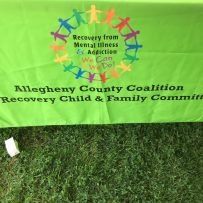Child & Family Committee Promotes Recovery & Resiliency at AFN Picnic
